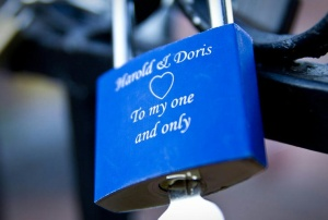 Picture taken from the Locks of Love website.